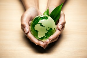 five ways to go green and save the planet